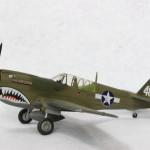 P-40N_2
