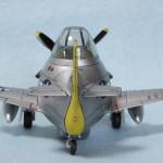 P-51egg_4