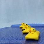 duck_f13