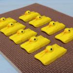 duck_f5